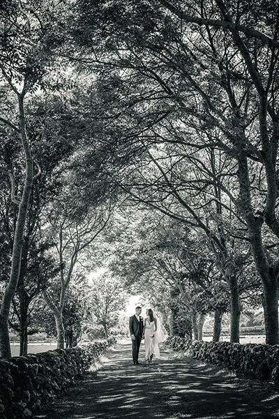 Mayo Wedding Photographers